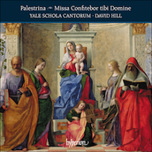 Album Cover: Palestrina: Missa Confitebor tibi Domine and other works. Yale Schola Cantorum, David Hill, conductor.